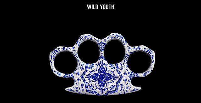 Steve Angello - Wild Youth